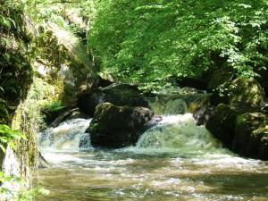 rivierecristalline_dronneausautduchalard