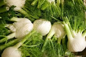 fenouil legumes